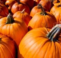 Make Your Halloween HallowGREEN!