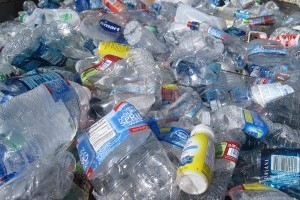 Beyond the Plastic: Plastic Water Bottles are a Multi-Faceted Issue