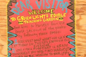 Green Light's Edible City